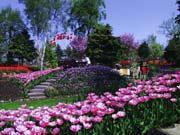 Blumenpark Jesperhus