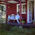 Ferienhaus in Dänemark für Allergiker